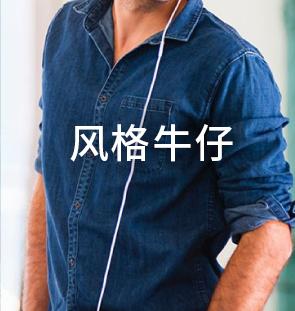 中文-首页-产品-风格